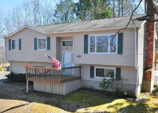 Foreclosed Home in Danbury 06810 WARD DR S - Property ID: 4424191872