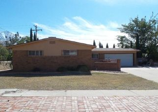 Foreclosed Home in El Paso 79925 LUELLA AVE - Property ID: 4424204566