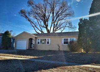 Foreclosed Home in Pueblo 81001 CONSTITUTION RD - Property ID: 4424298731