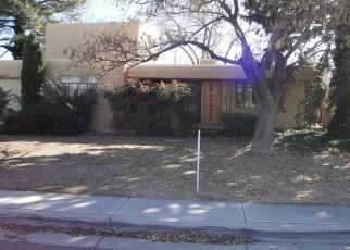 Foreclosed Home in Albuquerque 87112 ELVIN AVE NE - Property ID: 4425257449