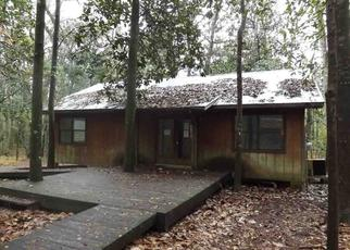 Foreclosed Home in Sopchoppy 32358 SMITH CREEK RD - Property ID: 4425531623