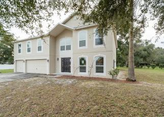 Foreclosed Home in Mount Dora 32757 LAKE ANDREA CIR - Property ID: 4426197787