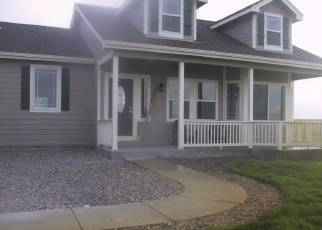 Foreclosed Home in Bennett 80102 S COUNTY ROAD 137 - Property ID: 4430294142