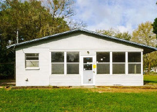 Foreclosed Home in Plant City 33566 CHARLESTON AVE - Property ID: 4433873267