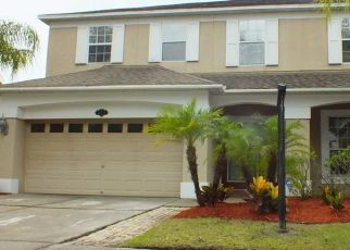 Foreclosed Home in Tampa 33647 STILL WIND DR - Property ID: 4435940507