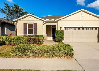 Foreclosed Home in Brandon 33510 CANYON OAKS DR - Property ID: 4436804187