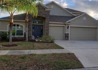 Foreclosed Home in Riverview 33579 ROCKLEDGE VIEW DR - Property ID: 4437192233