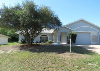 Foreclosed Home in Inverness 34450 E CHINA GROVE LN - Property ID: 4439144286