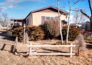 Foreclosed Home in Pueblo 81007 E DON DR - Property ID: 4439650591