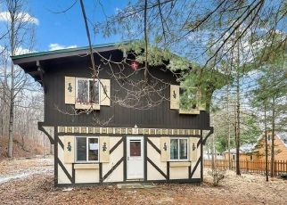 Foreclosed Home in Putnam Valley 10579 BREEZY PARK RD - Property ID: 4440798971