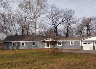 Foreclosed Home in Hastings 49058 CHIPPEWA TRL - Property ID: 4441629803