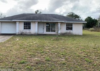 Foreclosed Home in Brooksville 34613 ESTER DR - Property ID: 4442243391