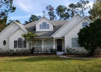 Foreclosed Home in Palm Coast 32137 BIRCHWOOD PL - Property ID: 4445413895