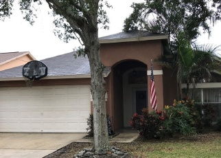Foreclosed Home in Brandon 33511 ELK SPRING DR - Property ID: 4445645580