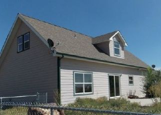 Foreclosed Home in Delta 81416 CLIFF VIEW RD - Property ID: 4446716421