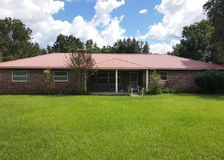 Foreclosed Home in Zephyrhills 33540 MERRICK RD - Property ID: 4448962801