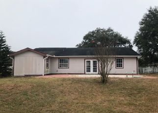 Foreclosed Home in Saint Cloud 34771 LIZA ST - Property ID: 4450883750