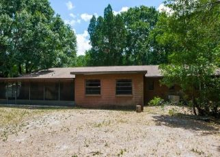 Foreclosed Home in Wesley Chapel 33543 RATHEL LN - Property ID: 4453577730