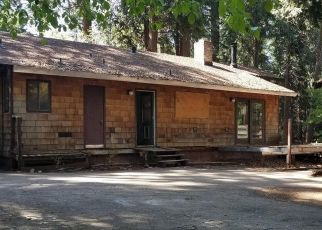 Foreclosed Home in Pollock Pines 95726 EL CAMINO DR - Property ID: 4453615385