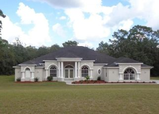 Foreclosed Home in Webster 33597 ATWOOD DR - Property ID: 4455652850