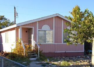 Foreclosed Home in Beatty 89003 W HOYT ST - Property ID: 4455711985