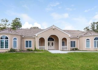 Foreclosed Home in Brooksville 34614 MARVELWOOD RD - Property ID: 4456274328