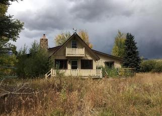 Foreclosed Home in Crested Butte 81224 LOWER ALLEN RD - Property ID: 4456826168