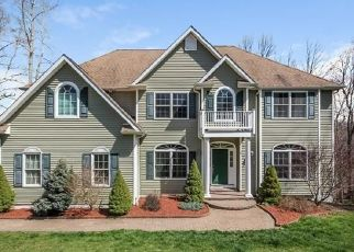 Foreclosed Home in Pawling 12564 HIGHLANDS DR - Property ID: 4457320204