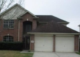 Foreclosed Home in Houston 77047 COUNTY CRESS DR - Property ID: 4460437714
