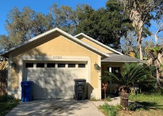 Foreclosed Home in Seffner 33584 MANGO GROVES BLVD - Property ID: 4460652762