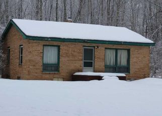 Foreclosed Home in Lincoln 48742 E TRASK LAKE RD - Property ID: 4461139343