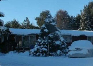 Foreclosed Home in Trout Creek 49967 HEMLOCK ST - Property ID: 4461173958