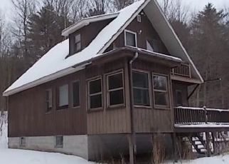 Foreclosed Home in Lowville 13367 PASSENGAR POND - Property ID: 4462449770