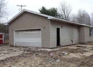 Foreclosed Home in Kaleva 49645 MAKINEN RD - Property ID: 4465610172