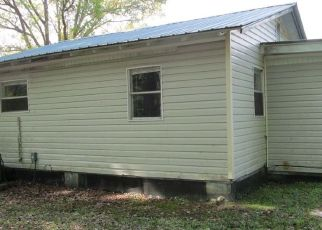 Foreclosed Home in Lake City 32055 NE ETHAN PL - Property ID: 4465944803