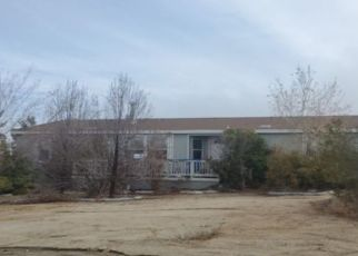 Foreclosed Home in Pearblossom 93553 132ND ST E - Property ID: 4471930141
