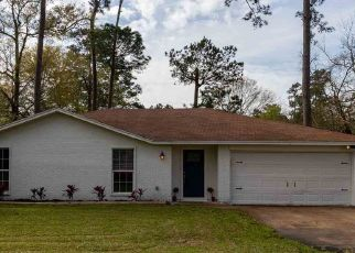 Foreclosed Home in Vidor 77662 WILLOW BEND DR - Property ID: 4473138517