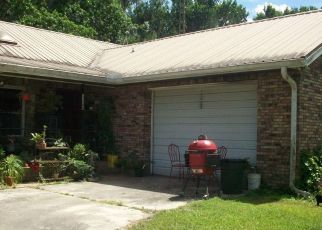 Foreclosed Home in Reddick 32686 NW 110TH AVE - Property ID: 4474720931