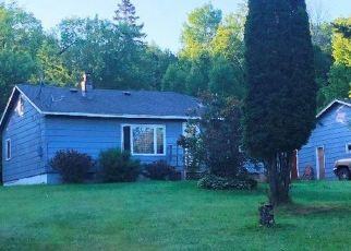 Foreclosed Home in Duluth 55804 SCHAU RD - Property ID: 4476270474