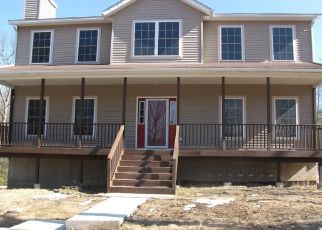 Foreclosed Home in Wurtsboro 12790 MASTEN LAKE CT - Property ID: 4478022811