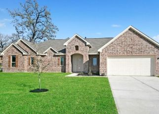 Foreclosed Home in Dayton 77535 ROAD 662 - Property ID: 4481692146