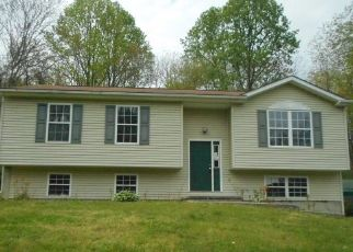 Foreclosed Home in Winchester 22602 WITCH HAZEL TRL - Property ID: 4485214784