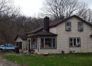 Foreclosed Home in Ionia 48846 W RIVERSIDE DR - Property ID: 4487073992