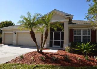 Foreclosed Home in Apollo Beach 33572 CARRINGTON OAKS LN - Property ID: 4487711669