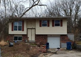 Foreclosed Home in Festus 63028 HOLLY LN - Property ID: 4489061504