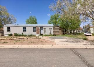 Foreclosed Home in Holbrook 86025 DESERT VIEW DR - Property ID: 4489425906