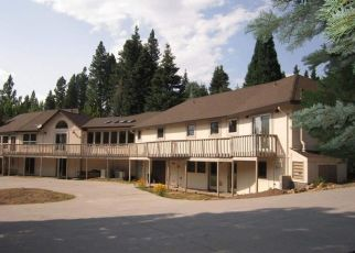 Foreclosed Home in Mount Shasta 96067 SHASTA WAY - Property ID: 4491285985