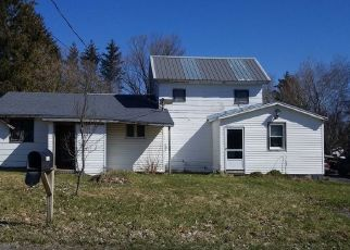 Foreclosed Home in Munnsville 13409 STOCKBRIDGE HILL RD - Property ID: 4492050227