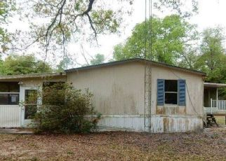 Foreclosed Home in Lakeland 33809 DEER RUN - Property ID: 4493579197