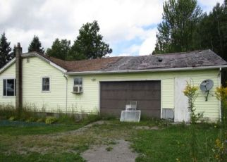 Foreclosed Home in North Collins 14111 GOWANDA STATE RD - Property ID: 4494902768